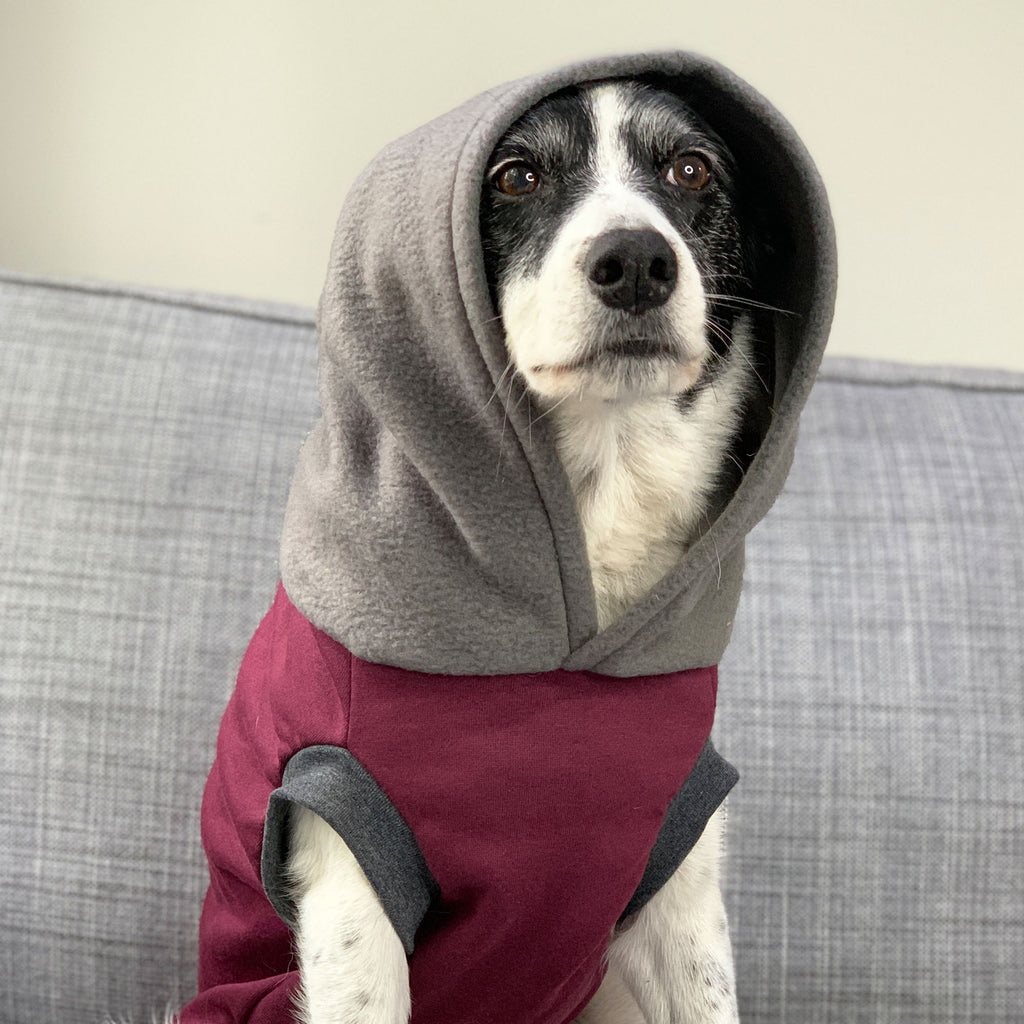 The Wally - Hoodie - The Sophisticated Pet