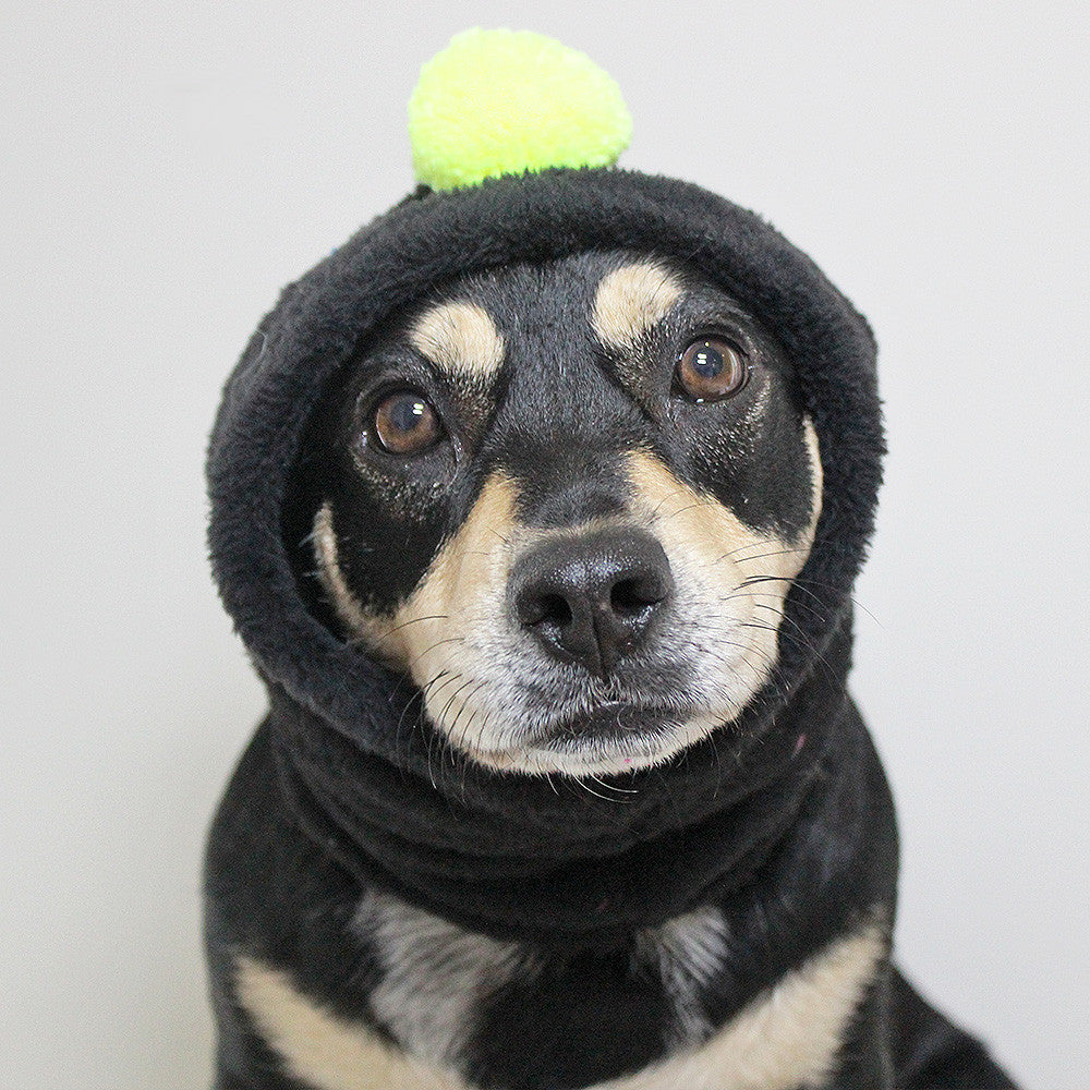 Hoodlum - Beanie - The Sophisticated Pet