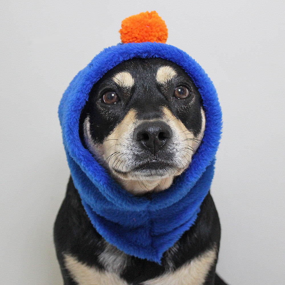Blue Bandit - Beanie - The Sophisticated Pet