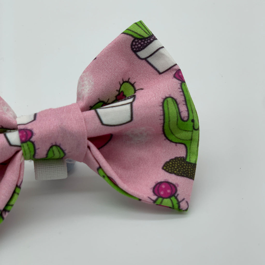 Prickle Party - Bow Tie - The Sophisticated Pet
