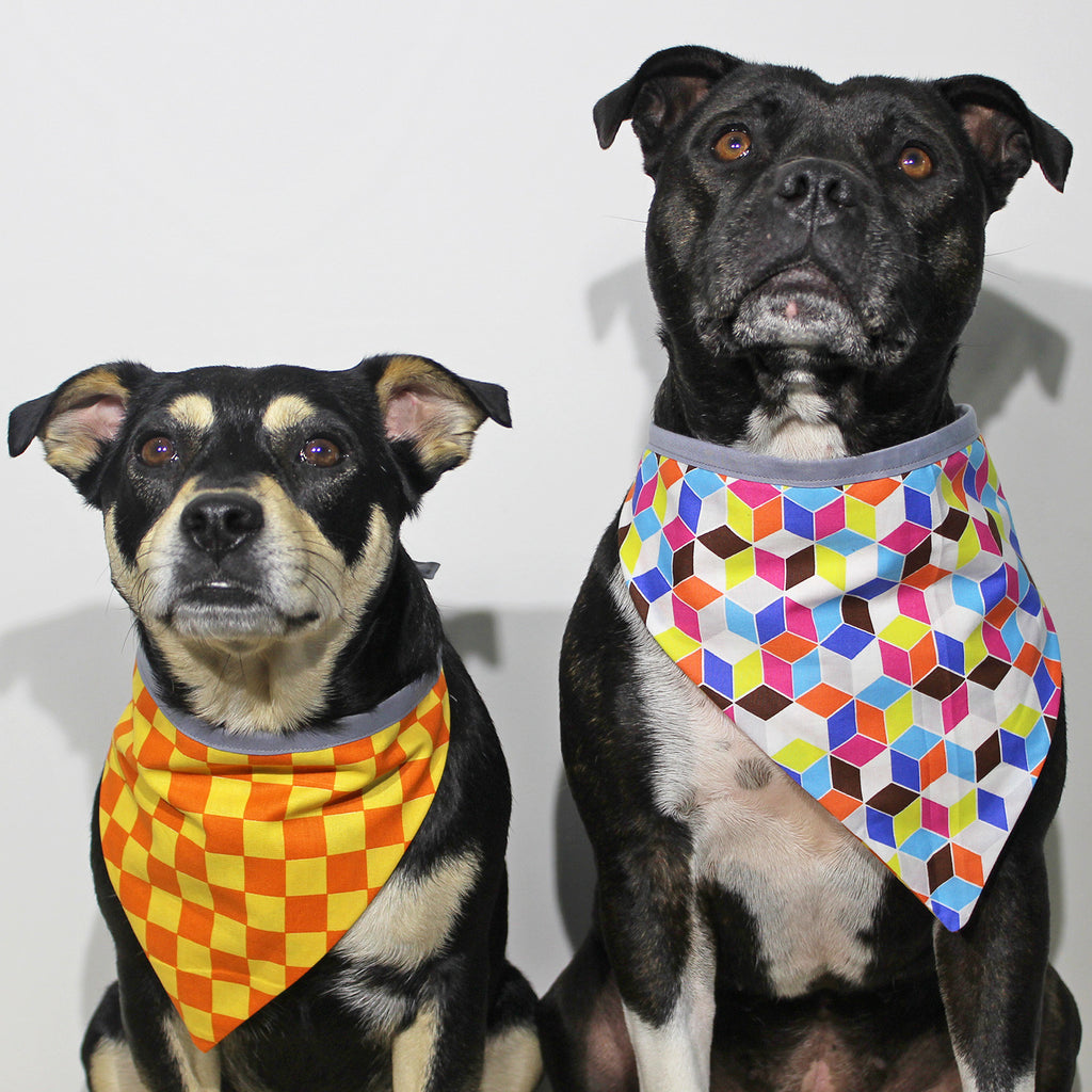 Geometrics 101 - Bandana - The Sophisticated Pet