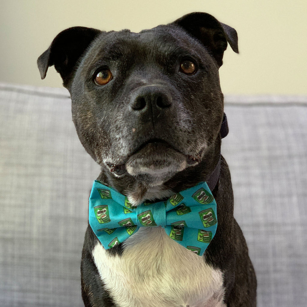 Milo Dinosaur - Bow Tie - The Sophisticated Pet