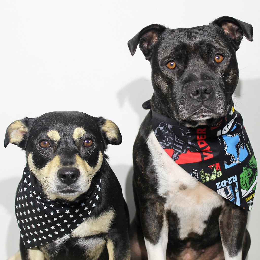 The Bandana Awakens - Bandana - The Sophisticated Pet