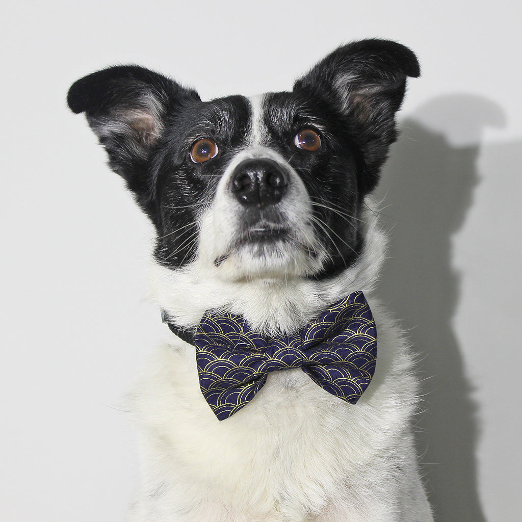 The Wedding Guest - Bow Tie - The Sophisticated Pet