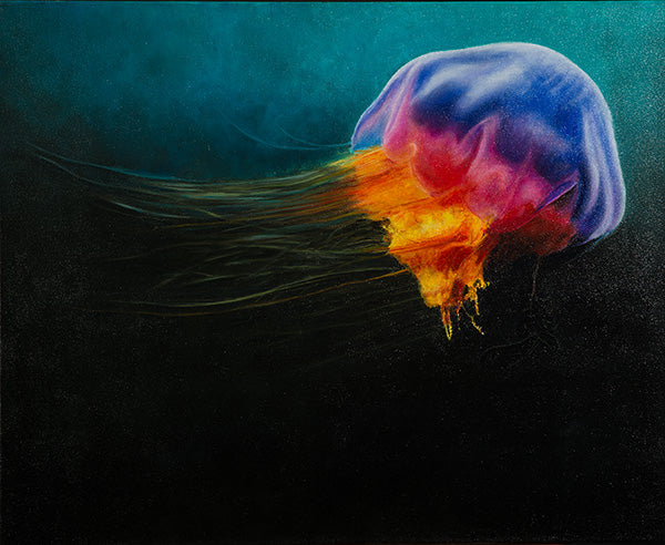 Jelly Fish by Nancy R. Chalut