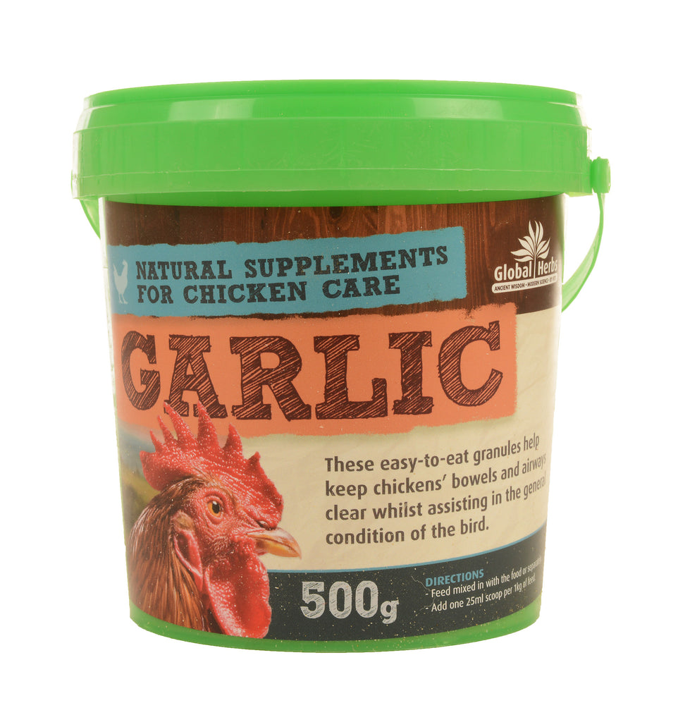Global Herbs Garlic 500g