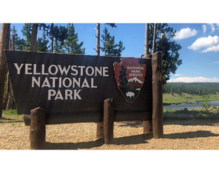 Our Itinerary for Yellowstone National Park's Grand Loop
