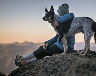 Safety Guide for Hiking with Your Dog