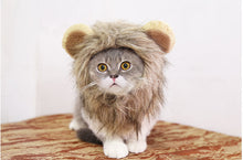 Load image into Gallery viewer, Lion Mane Wig For Cat
