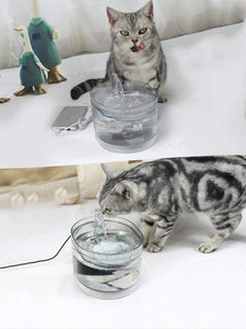 Ultra Quiet Automatic Cat And Dog Water Dispenser