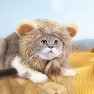 Lion Mane Wig For Cat