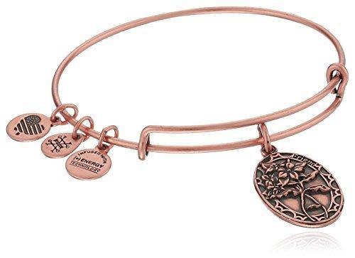 Alex and Ani Because I love you, Friend II Expandable Rafaelian Rose Gold Finish Bangle Bracelet