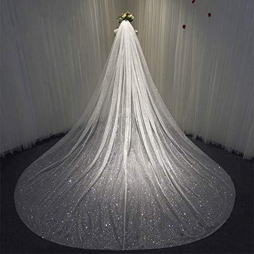 Aukmla Elegant Cathedral Veil Long Wedding Veil Sparking Exquisite Soft Tulle With Silver Dotted Glitter for Bridal Veils (White)