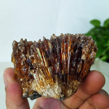 Load image into Gallery viewer, 50-400g Rare natural amber calcite stone