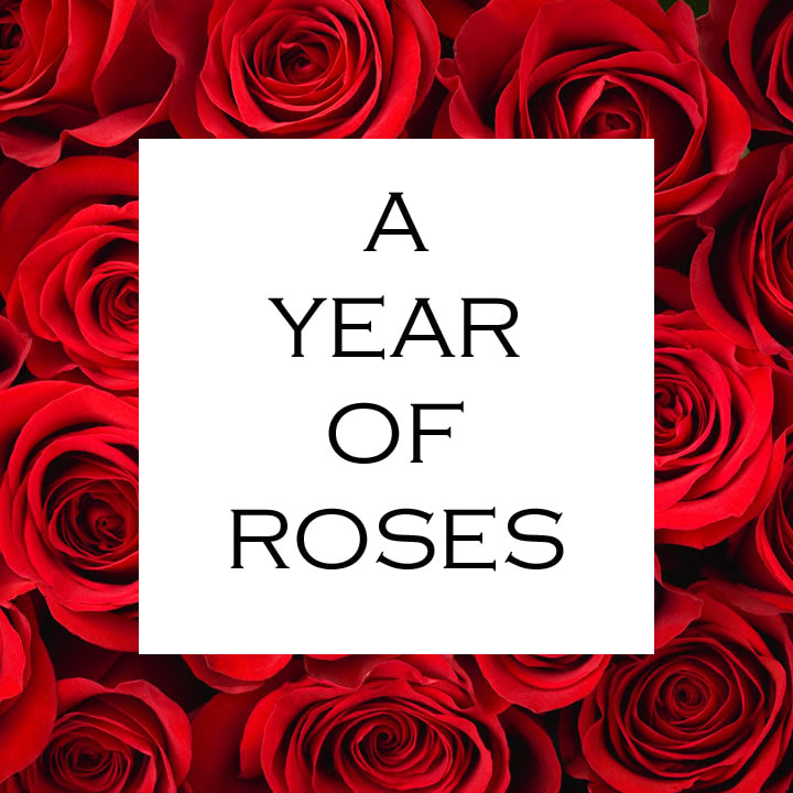 A Year of Roses - Daily floral delivery from Botanica Floral Design