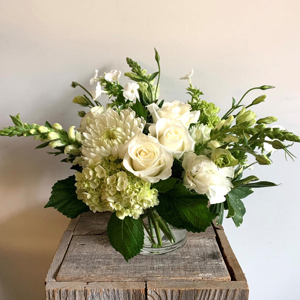 Adagio - Daily floral delivery from Botanica Floral Design
