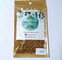 Coriander seeds 25 grams pack