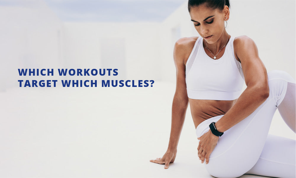 Which Workouts Target Which Muscles