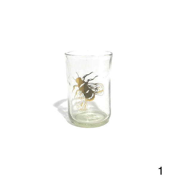 'Bug Cup'