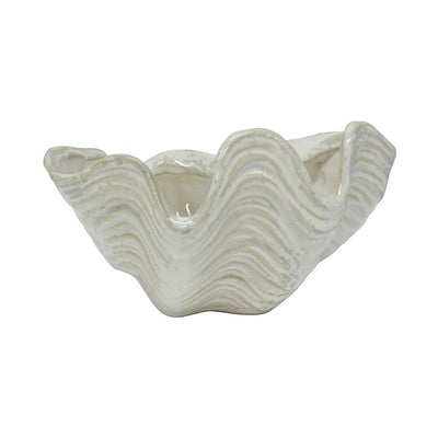 Clam Shell Decor