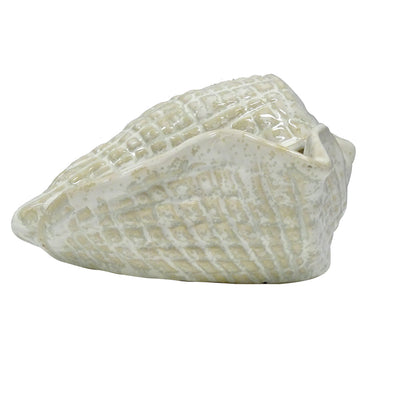 Cowrie Shell Decor