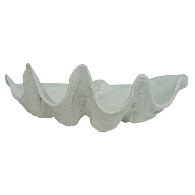 Clam Shell Decor 51cm