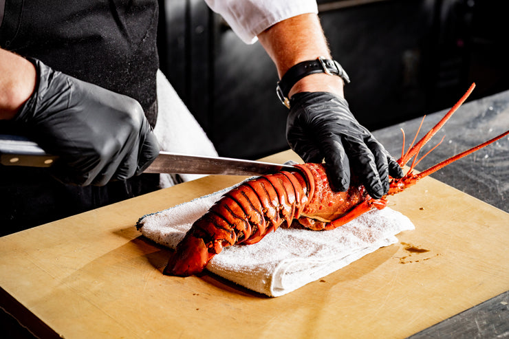 Gloved hands using knife to prepare spiny lobster