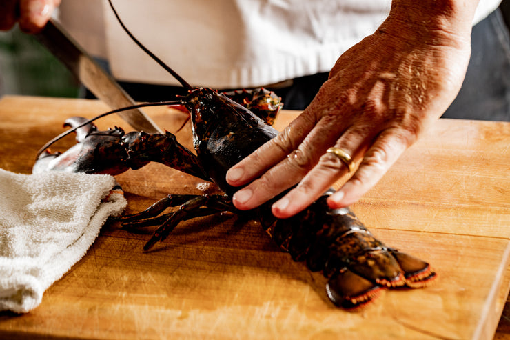 chef demonstrating putting a lobster to sleep before cooking