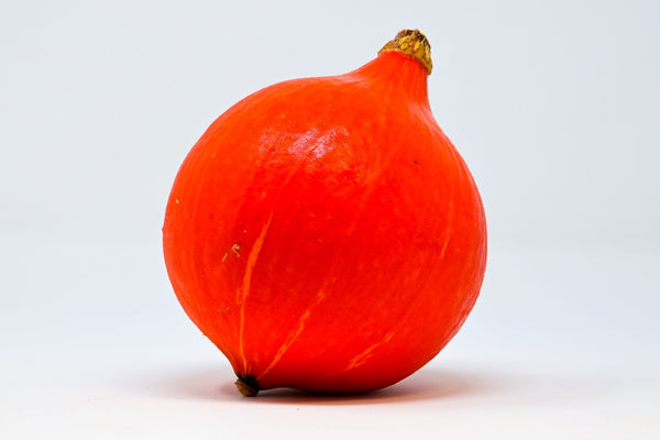 red kuri squash on a white background