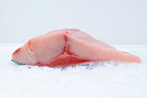 hamachi fillet on ice
