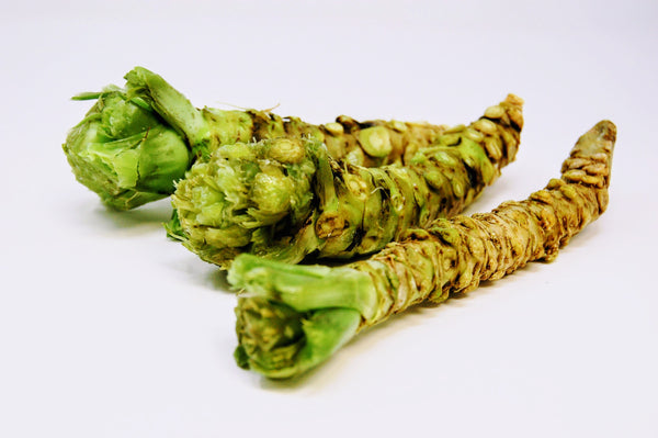 half moon bay wasabi root