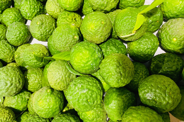 Makrut Lime - K&J Orchards - per lb