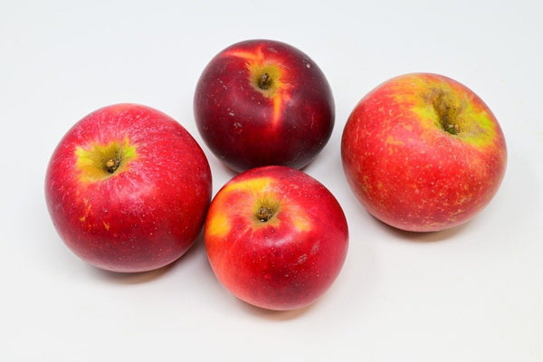 Envy Apples (Organic) - 2 lbs
