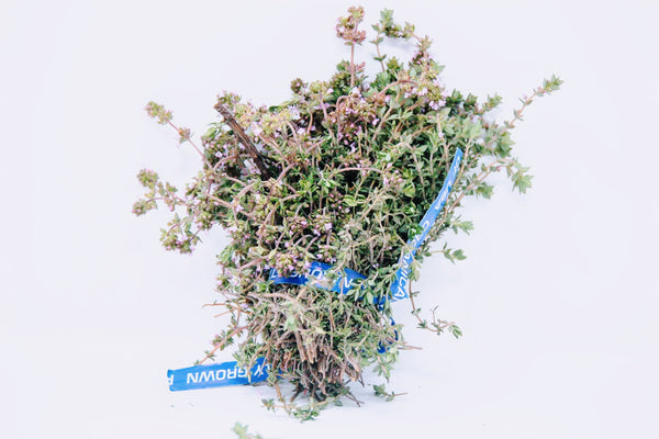 one bunch thyme