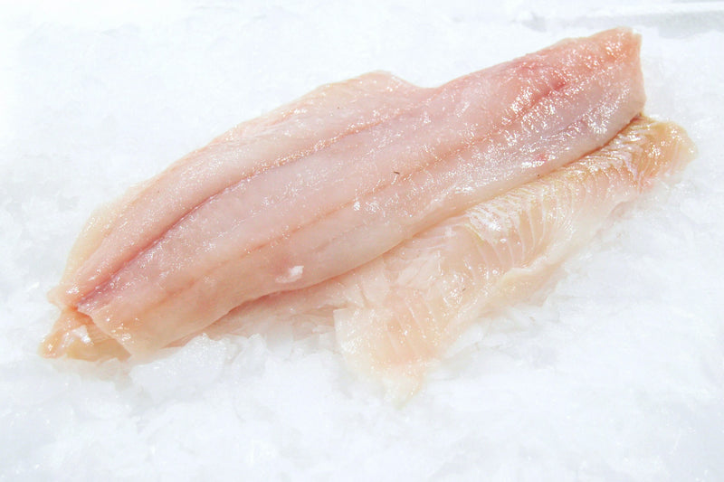 petrale sole fillet on ice