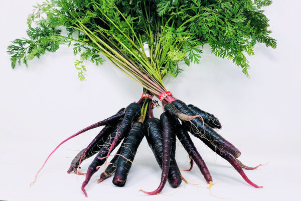 Organic Purple Carrot Bunch