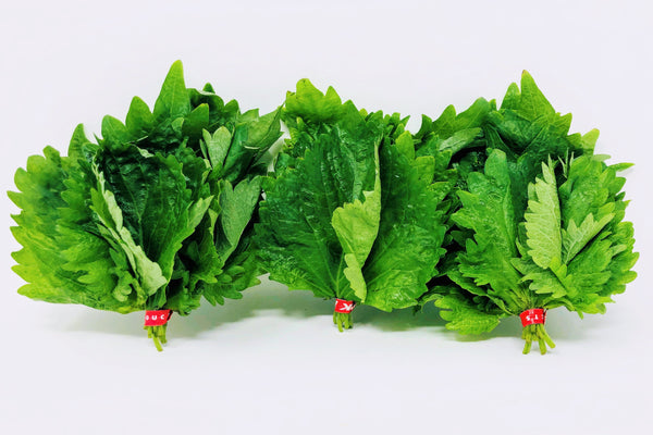 shiso leaf three bunches