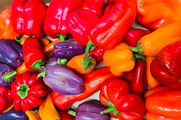 Sweet Bell Pepper Mix (Riverdog Farm) - 1 lb