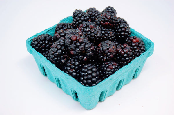 Organic Blackberries- 2 baskets