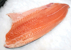 atlantic salmon fillet on ice
