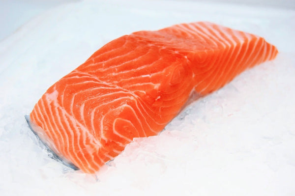 ora king salmon fillet on ice