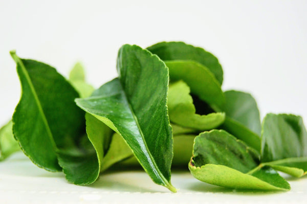Kaffir Lime Leaves- 1oz