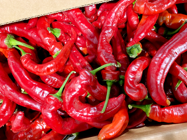 Jimmy Nardello Peppers (Riverdog Farm) - 1 lb