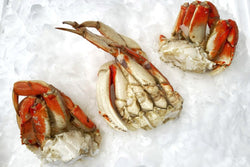dungeness crab halves on ice