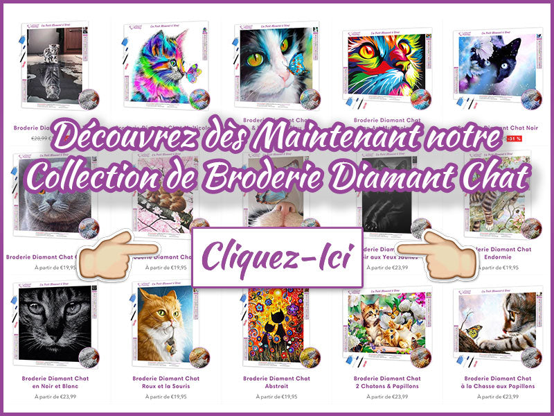 Broderie Diamant Chat