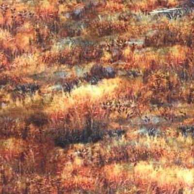Deer in the Meadow  - Allover Trees - 27604 T - QT Fabrics