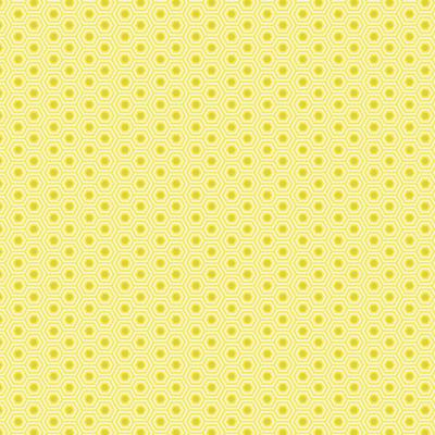 PWTP150 Sunshine - True Colors - FreeSpirit Fabrics