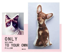Load image into Gallery viewer, Custom 3D Pet Pillow-Custom Pet Pillow-50x50-Two sides-COOL FUN TECH