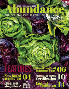 Abundance Magazine Subscription
