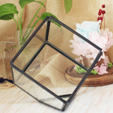 Micro Landscape Square Glass Flower Room Geometric Cubes Glass Terrarium Home Decor Plant Fleshy Flower Holder Vase Pot
